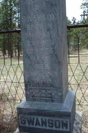 SWANSON, CHARLES G. - Pennington County, South Dakota   CHARLES G. SWANSON - South Dakota Gravestone Photos