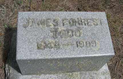 TODD, JAMES FOREST - Pennington County, South Dakota | JAMES FOREST TODD - South Dakota Gravestone Photos