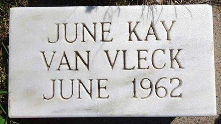 VAN VLECK, JUNE KAY - Pennington County, South Dakota | JUNE KAY VAN VLECK - South Dakota Gravestone Photos