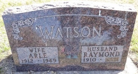WATSON, RAYMOND - Pennington County, South Dakota   RAYMOND WATSON - South Dakota Gravestone Photos