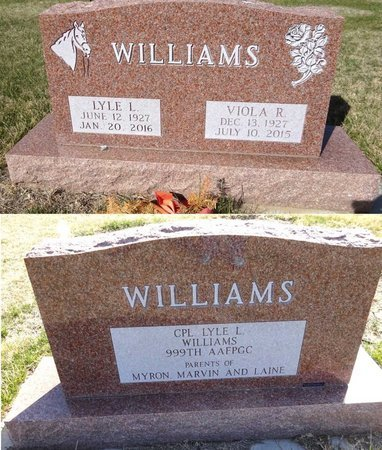 HAMM WILLIAMS, VIOLA - Pennington County, South Dakota | VIOLA HAMM WILLIAMS - South Dakota Gravestone Photos