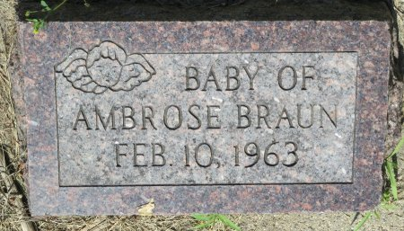 BRAUN, BABY OF AMBROSE BRAUN - Roberts County, South Dakota | BABY OF AMBROSE BRAUN BRAUN - South Dakota Gravestone Photos