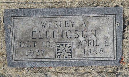 ELLINGSON, WESLEY A. - Roberts County, South Dakota | WESLEY A. ELLINGSON - South Dakota Gravestone Photos
