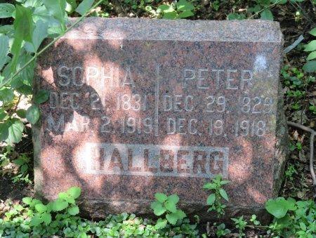 HALLBERG, PETER - Roberts County, South Dakota | PETER HALLBERG - South Dakota Gravestone Photos