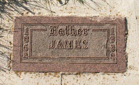 NELSON, JAMES - Roberts County, South Dakota | JAMES NELSON - South Dakota Gravestone Photos
