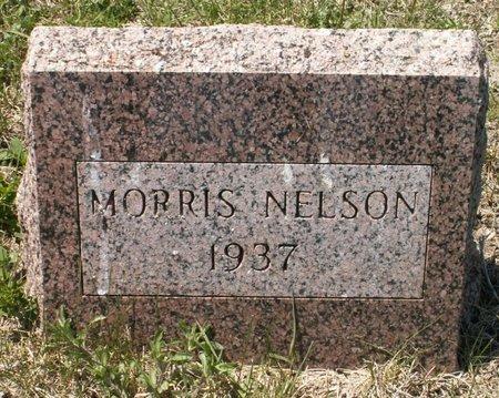 NELSON, MORRIS - Roberts County, South Dakota   MORRIS NELSON - South Dakota Gravestone Photos