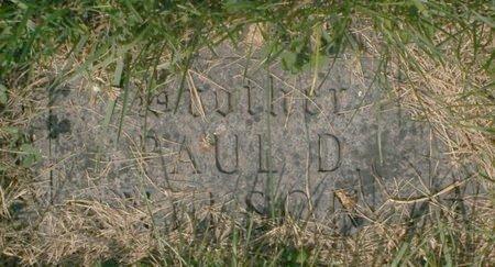NELSON, PAUL D - Roberts County, South Dakota | PAUL D NELSON - South Dakota Gravestone Photos