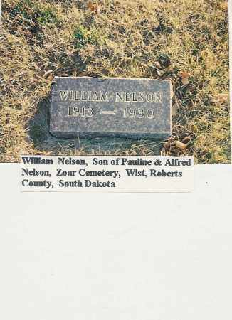 """NELSON, WILLIAM """"WILLIE"""" - Roberts County, South Dakota 