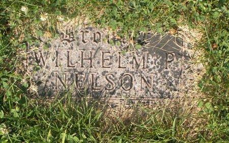 NELSON, WILHELM P - Roberts County, South Dakota   WILHELM P NELSON - South Dakota Gravestone Photos