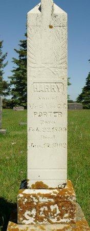 PORTER, HARRY - Roberts County, South Dakota   HARRY PORTER - South Dakota Gravestone Photos