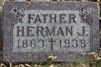 SCHAUNAMAN, HERMAN J. - Roberts County, South Dakota | HERMAN J. SCHAUNAMAN - South Dakota Gravestone Photos