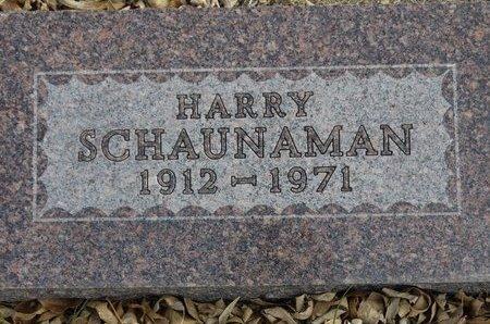 SCHAUNAMAN, HARRY - Roberts County, South Dakota | HARRY SCHAUNAMAN - South Dakota Gravestone Photos