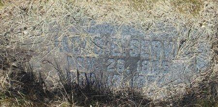 SERVIS, JACOB E. - Roberts County, South Dakota | JACOB E. SERVIS - South Dakota Gravestone Photos