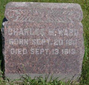 WARD, CHARLES M. - Roberts County, South Dakota | CHARLES M. WARD - South Dakota Gravestone Photos
