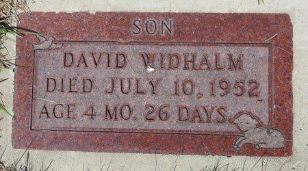WIDHALM, DAVID - Roberts County, South Dakota | DAVID WIDHALM - South Dakota Gravestone Photos