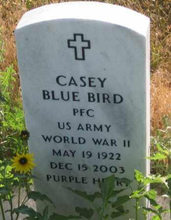 BLUE BIRD, CASEY - Oglala Lakota County, South Dakota   CASEY BLUE BIRD - South Dakota Gravestone Photos