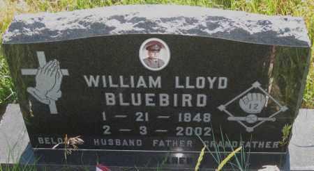 BLUEBIRD, WILLIAM  LLOYD - Oglala Lakota County, South Dakota | WILLIAM  LLOYD BLUEBIRD - South Dakota Gravestone Photos