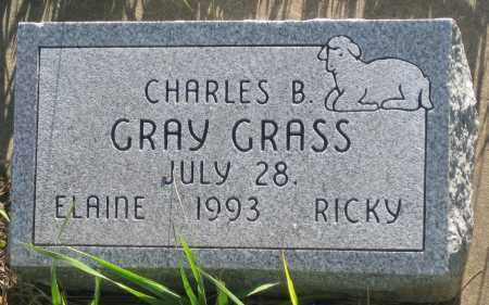 GRAY GRASS, CHARLES B. - Oglala Lakota County, South Dakota   CHARLES B. GRAY GRASS - South Dakota Gravestone Photos