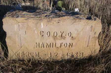 HAMILTON, CODY O. - Oglala Lakota County, South Dakota | CODY O. HAMILTON - South Dakota Gravestone Photos