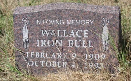 IRON BULL, WALLACE - Oglala Lakota County, South Dakota | WALLACE IRON BULL - South Dakota Gravestone Photos