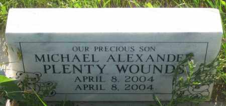 PLENTY WOUNDS, MICHAEL  ALEXANDER - Oglala Lakota County, South Dakota | MICHAEL  ALEXANDER PLENTY WOUNDS - South Dakota Gravestone Photos