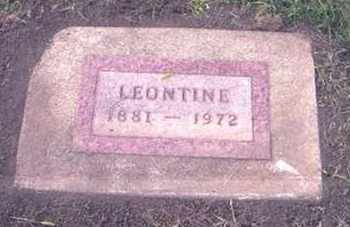 JOHNSON THOMPSON, H. LEONTINE - Tripp County, South Dakota | H. LEONTINE JOHNSON THOMPSON - South Dakota Gravestone Photos