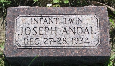 ANDAL, JOSEPH - Turner County, South Dakota   JOSEPH ANDAL - South Dakota Gravestone Photos