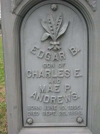 ANDREWS, EDGAR B. (CLOSE UP) - Turner County, South Dakota   EDGAR B. (CLOSE UP) ANDREWS - South Dakota Gravestone Photos