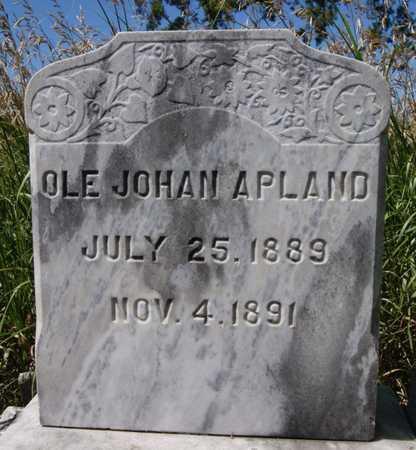 APLAND, OLE JOHAN - Turner County, South Dakota | OLE JOHAN APLAND - South Dakota Gravestone Photos
