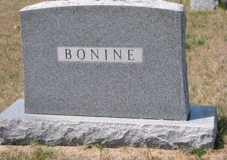 BONINE, *FAMILY MONUMENT - Turner County, South Dakota | *FAMILY MONUMENT BONINE - South Dakota Gravestone Photos