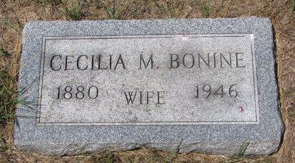 BONINE, CECILIA M. - Turner County, South Dakota | CECILIA M. BONINE - South Dakota Gravestone Photos