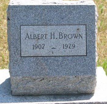 BROWN, ALBERT H. - Turner County, South Dakota   ALBERT H. BROWN - South Dakota Gravestone Photos