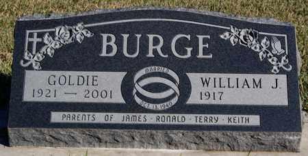 BURGE, WILLIAM J - Turner County, South Dakota   WILLIAM J BURGE - South Dakota Gravestone Photos