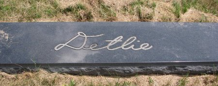 DETLIE, *FAMILY MONUMENT - Turner County, South Dakota | *FAMILY MONUMENT DETLIE - South Dakota Gravestone Photos