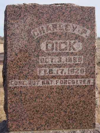 DICK, CHARLEY P - Turner County, South Dakota | CHARLEY P DICK - South Dakota Gravestone Photos