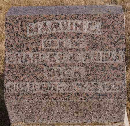 DICK, MARVIN C - Turner County, South Dakota   MARVIN C DICK - South Dakota Gravestone Photos