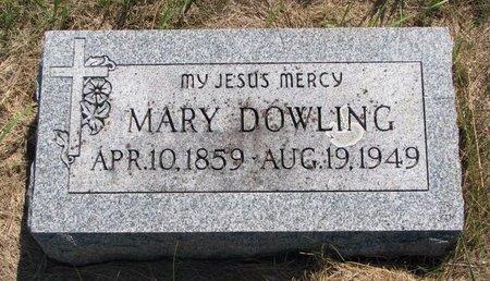 DOWLING, MARY - Turner County, South Dakota | MARY DOWLING - South Dakota Gravestone Photos