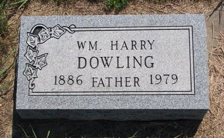 DOWLING, WILLIAM HARRY - Turner County, South Dakota   WILLIAM HARRY DOWLING - South Dakota Gravestone Photos