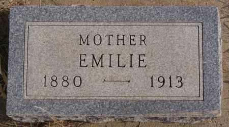 ECKSTEIN, EMILIE - Turner County, South Dakota | EMILIE ECKSTEIN - South Dakota Gravestone Photos