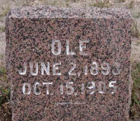 ERICKSON, OLE - Turner County, South Dakota   OLE ERICKSON - South Dakota Gravestone Photos