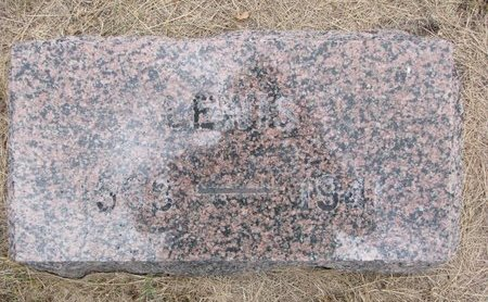 FJELSETH, LEWIS - Turner County, South Dakota | LEWIS FJELSETH - South Dakota Gravestone Photos
