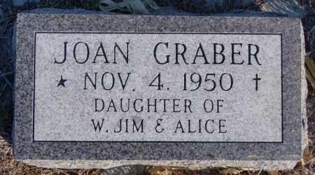GRABER, JOAN - Turner County, South Dakota   JOAN GRABER - South Dakota Gravestone Photos