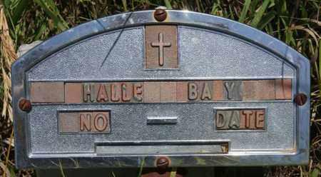 HALLE, BABY - Turner County, South Dakota | BABY HALLE - South Dakota Gravestone Photos