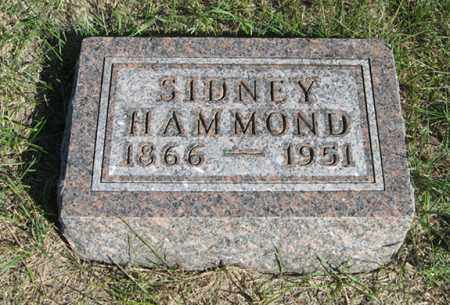 HAMMOND, SIDNEY - Turner County, South Dakota   SIDNEY HAMMOND - South Dakota Gravestone Photos