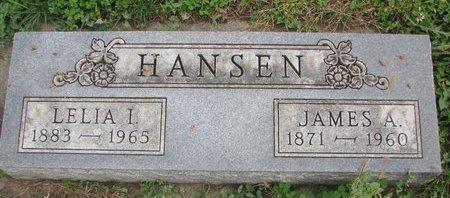 HANSEN, LELIA I. - Turner County, South Dakota | LELIA I. HANSEN - South Dakota Gravestone Photos