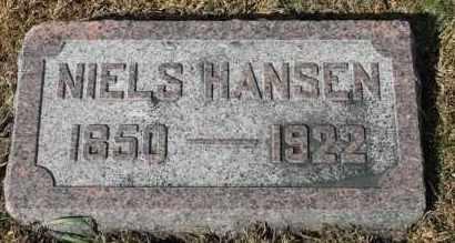 HANSEN, NIELS - Turner County, South Dakota | NIELS HANSEN - South Dakota Gravestone Photos