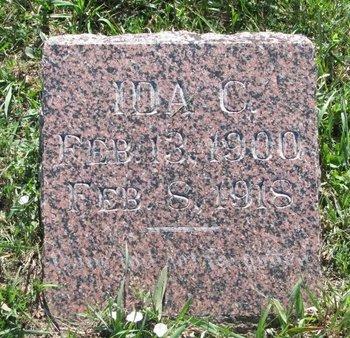 HOLLAND, IDA C. - Turner County, South Dakota | IDA C. HOLLAND - South Dakota Gravestone Photos