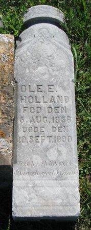 HOLLAND, OLE E. - Turner County, South Dakota | OLE E. HOLLAND - South Dakota Gravestone Photos