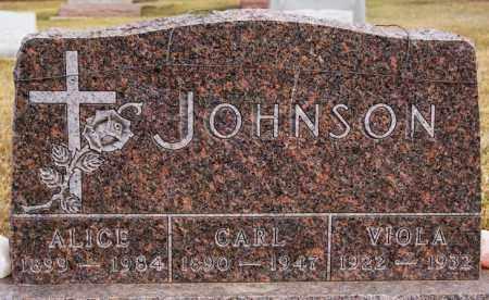 JOHNSON, VIOLA - Turner County, South Dakota | VIOLA JOHNSON - South Dakota Gravestone Photos