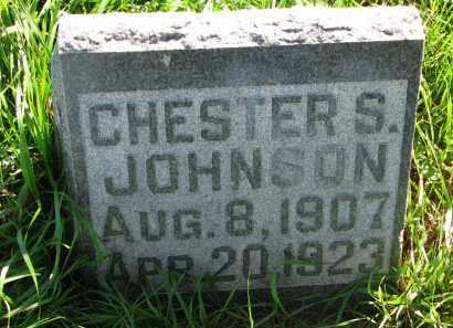 JOHNSON, CHESTER S. - Turner County, South Dakota | CHESTER S. JOHNSON - South Dakota Gravestone Photos